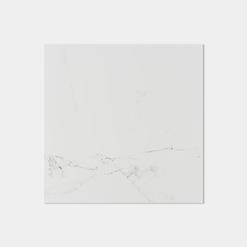 Carrara Blanco Brillo 59.6X59.6